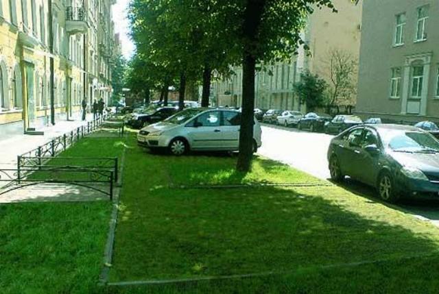 Газон в Липецке  Внутреннее озеленение